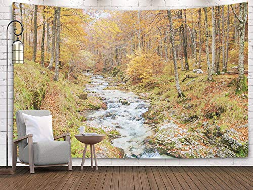 Leaf River Digital Game Camera - Bisead Wall Art for Bedroom Tapestry, Map Art Tapestry 80x60 inchs River in Autumn Colorful Enchanted Forest Wall Hanging Gifts for Bedroom Dorm Décor