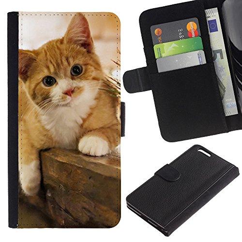 EuroCase - Apple Iphone 6 PLUS 5.5 - shorthair ginger yellow kitten red cat - Cuero PU Delgado caso cubierta Shell Armor Funda Case Cover