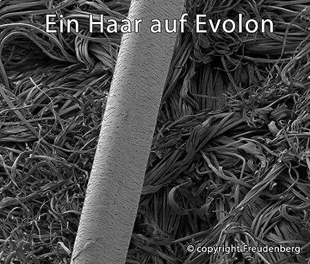 Altezza incassa 20 cm Milbenkotdicht Tauro 24529 coprimaterasso Integrale 80 x 200 cm compatta Struttura in Fibra in microfilamenti Gratis di inquinanti