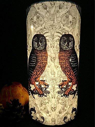 Spooky Owl Halloween Accent -