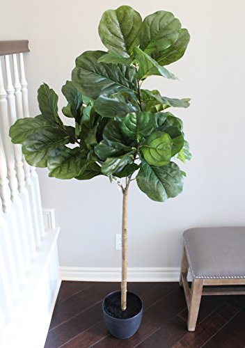 5 Foot Fiddle Leaf Fig Tree - Realistic Artificial Home (Fig Tree Leaf)