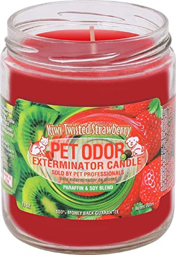 Specialty Pet Products Kiwi Twisted Strawberry Pet Odor Exterminator 13 Ounce Jar Candle (Best Odor Eliminating Candles)