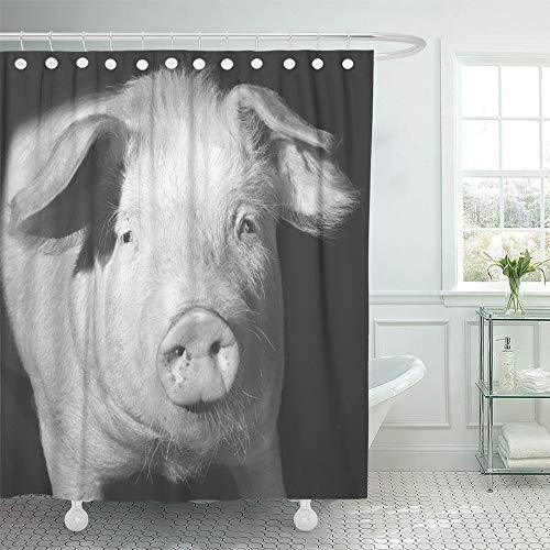 Juego de cortinas de ducha impermeables y ajustables, de poliéster, tela verde, diseño de cerdo de animales, color blanco y...