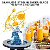 Livtor Blender Blade CBT-500 & O Ring Sealing