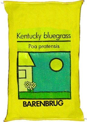 Barenbrug 491123 50 lbs. Kentucky Bluegrass Seed