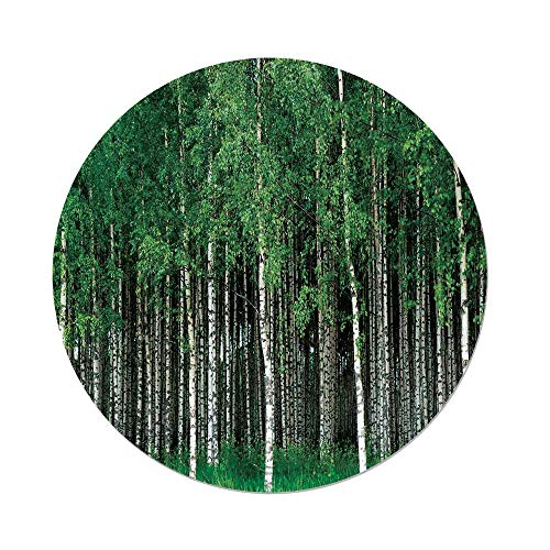 iPrint Polyester Round Tablecloth,Farm House Decor,Swedish Summer Landscape Birch Trees Trunks Northern Rural Seasonal Scenery,Green Grey,Dining Room Kitchen Picnic Table Cloth Cover Outdoor in