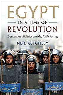 A revolution undone egypts road beyond revolt ha hellyer egypt in a time of revolution contentious politics and the arab spring cambridge studies fandeluxe Epub
