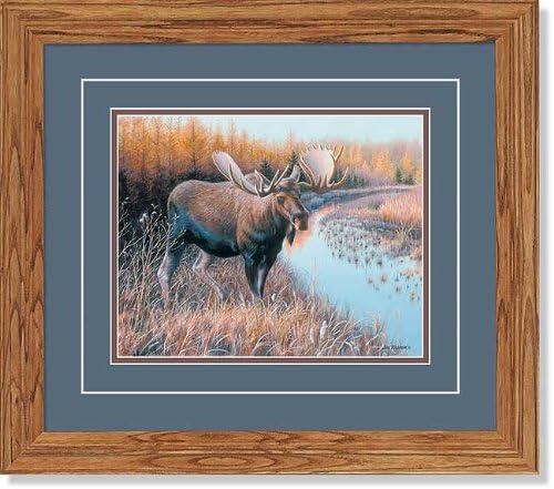 Tamarack Moose GNA Deluxe Framed Print by Jim Kasper