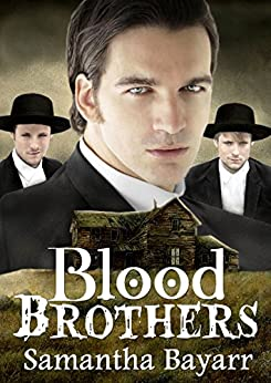 Amish Suspense: Blood Brothers: Book Three: Christian Suspense (Pigeon Hollow Amish Mysteries 3) by [Bayarr, Samantha]