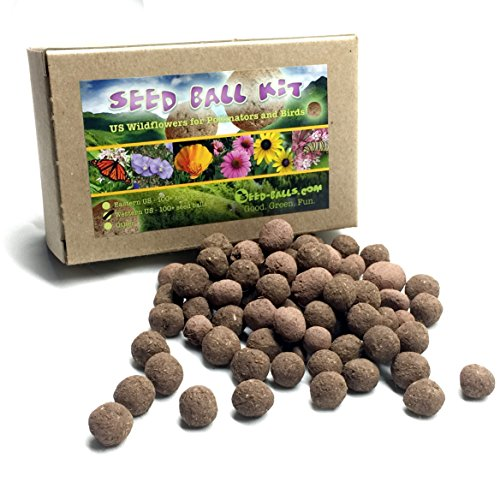US Native Wildflower Seed Ball Kit. Makes 100 wildflower seed bombs for pollinators. (Eastern US) by Seed-Balls.com