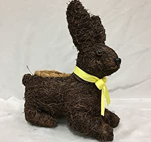 Paws & Pétalos Cepillo Bunny Maceta 28 cm