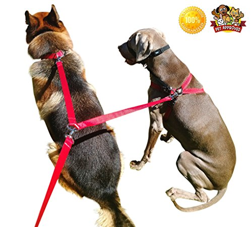 Double Dog Leash Coupler 8ft. Lead, Adjustable Clip, Any Size, Protect Your Dogs Everywhere