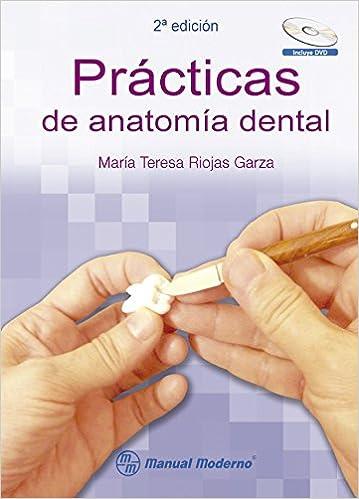 Prácticas de anatomía dental: María Teresa Riojas Garza: Amazon.com ...