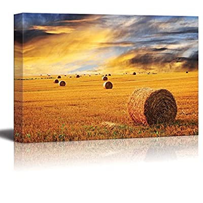 Golden Sunset Over Farm Field with Hay Bales, Made With Top Quality, Magnificent Style