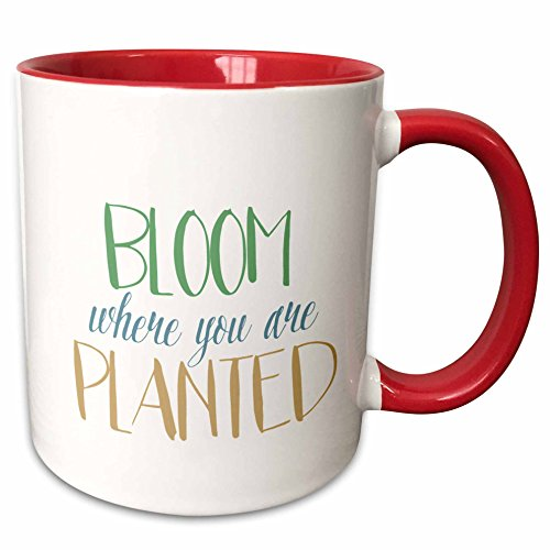 (3dRose 213090_5 Bloom Where You Are Planted Mug 11 oz Red)