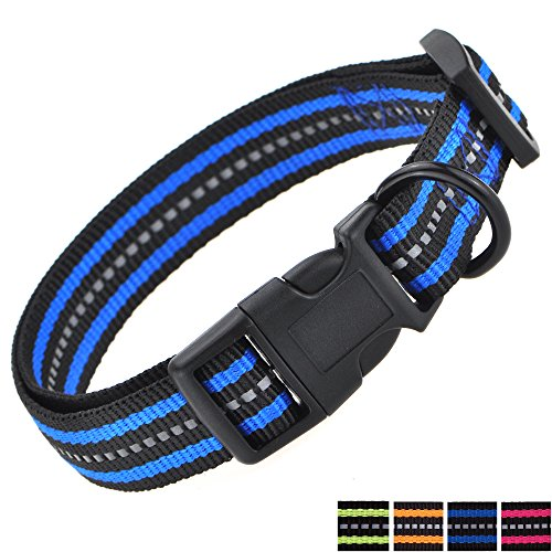Mile High Life Night Reflective Double Band Nylon Dog Pet Collar (Small, Blue)