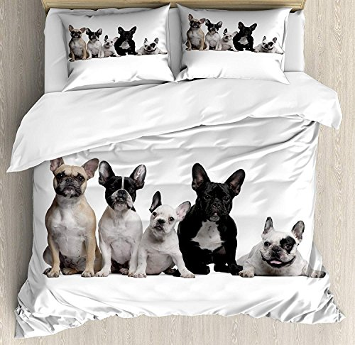 WAZZIT 4 Piece Duvet Cover Set Twin Bulldog Group of Young French Bulldogs with Adorable Expressions Animal Lover Photo Print Bedding Set with Zipper Closure Matching 2 Pillow ()