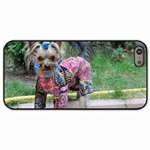 iPhone 5 5S Black Hardshell Case yorkshire terrier dog puppy Desin Images Protector Back Cover