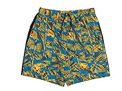 "Nike Men`s 9"" Volley Swim Trunks Shorts (Large, Blue Water (818) Yellowblack)"