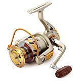 Spinning Fishing Reel,10 Ball Bearings Light and Smooth,1000 to 7000 Series,Left/Right Interchangeable Spinning Reels Saltwater Freshwater Fishing 5.5:1
