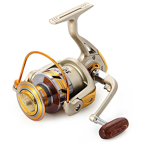Spinning Fishing Reel,10 Ball Bearings Light and Smooth,1000 to 7000 Series,Left/Right Interchangeable Spinning Reels Saltwater Freshwater Fishing 5.5:1 (Best Spinning Reel)