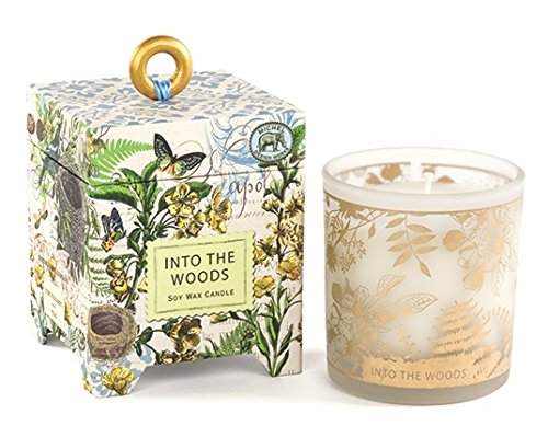 Michel Design Works Gift Boxed Soy Wax Candle, 6.5-Ounce, Into the Woods