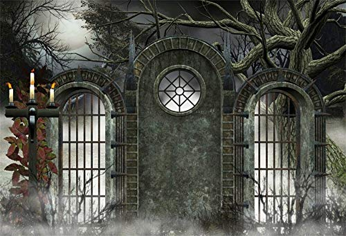 (AOFOTO 10x8ft Old Vintage Cemetery Arch Door Halloween Backdrop for Parties Lighting Candles Rack Aged Grunge Black Solid Gate Bare Trees Photography Background Photo Studio)