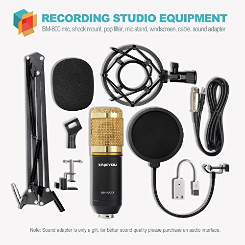 Buy microphones for recording singing