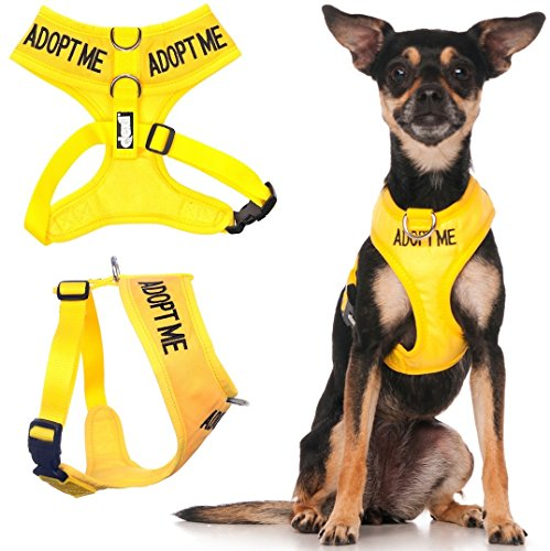 Dexil Limited Adopt ME Yellow Color Coded Non-Pull Front and
