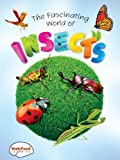 The Fascinating World of Insects