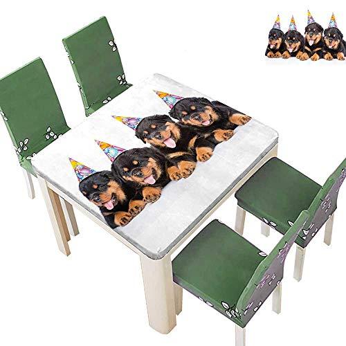 Spring & Summer Outdoor Tablecloth, Kids Rottweiler Puppi P Hats Print Black and Marigold Multicolor 50 x 50 Inch (Elastic Edge)