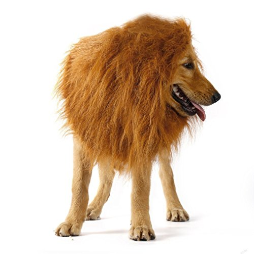 Kakasogo 2017 New Brown Lion Mane for Medium or Large Dog Party Club Halloween Christmas Festival Pet Decor Gift Supplies Hair Head Tool Set Adjustable Size Fit more King Dogs