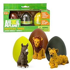Animal Planet Grow Eggs- Safari- Hatch and Grow Three Different Super-Sized Animals (Series 2) - 51SH2N9UojL - Animal Planet Grow Eggs- Safari- Hatch and Grow Three Different Super-Sized Animals (Series 2)