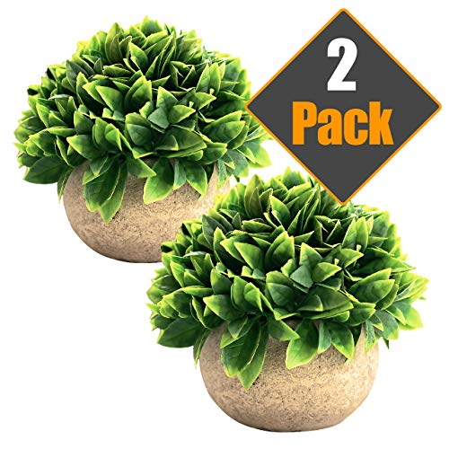 Sophia's Garden Artificial Plants Fake Plants Plant Decor, Cute, Realistic Desk Plant - Small Artificial Plants Fake Plant Multi Colored Artificial Plant for Home Decor Faux Plant Feaux (Green Leaf) from Sophia's Garden