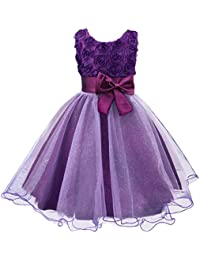 Little Girls Tutu 3D Rose Flower Dress for Toddler Girls