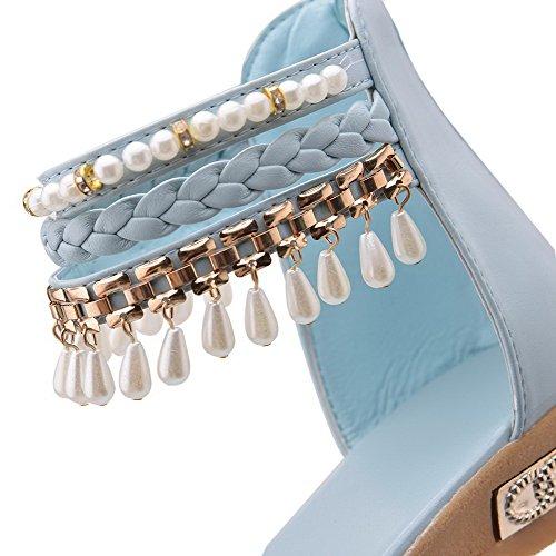 AalarDom Mujer Puntera Abierta Mini Tacón Material Suave Cremallera Sandalias de vestir, Azul(zhu), 39