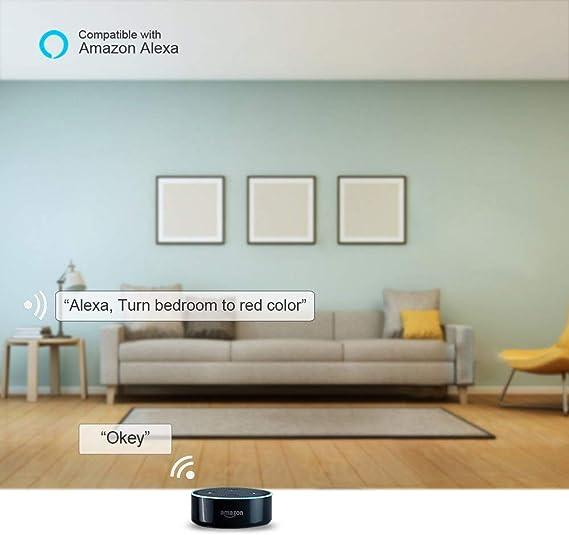 CRI 90+ Wohnzimmer 24W 2400LM Wifi Deckenlampe Dimmbar NOWES Smart LED Deckenleuchte Deckenlicht f/ür Kinderzimmer Schlafzimmer Kompatibel mit Alexa IP54 Google Assistant