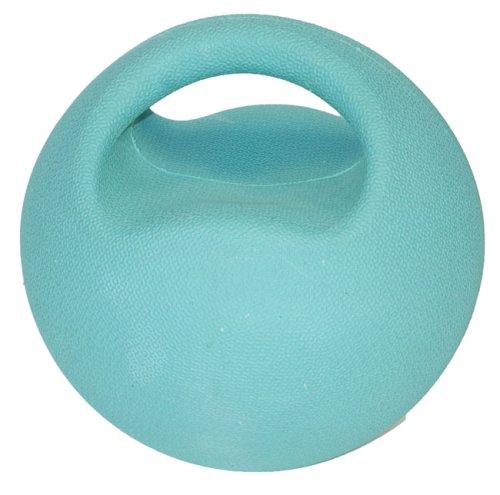 fit Premium Handle Medicine Ball