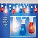 10FT Edison String Lights 10 Bulbs Patri