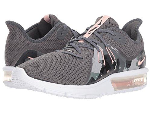 邪悪な回復うるさい[NIKE(ナイキ)] レディーステニスシューズ?スニーカー?靴 Air Max Sequent 3 Premium
