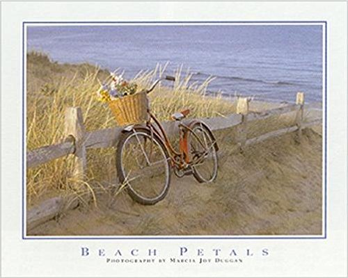 Petals by Marcia Joy Duggan 20x16 Photograph Art Print Poster Beach Ocean Seaside Red Bicycle Flowers Basket Bike Dunes Fence ()