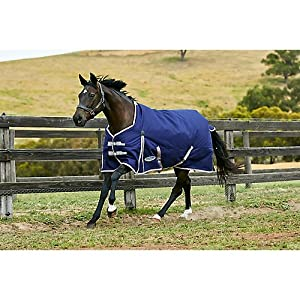 Weatherbeeta Comfitec Essential Standard Neck Lite Turnout Sheet 10