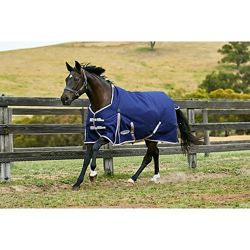 Weatherbeeta ComFiTec Essential Stand Neck Hvy 81 by Weatherbeeta