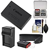 Best Ion Battery For Canon Rebels - Canon LP-E17 Rechargeable Battery Pack with Charger + Review