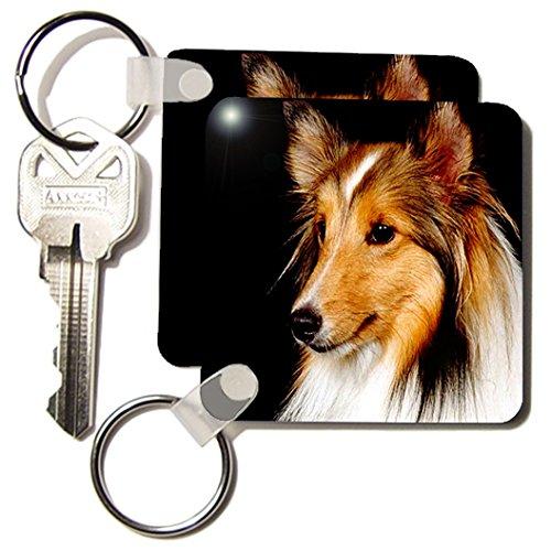 Dogs Sheltie/Shetland Sheepdog - Sheltie Shetland SheepDog - Key Chains - set of 2 Key Chains (Sheepdog Dog Keychain)