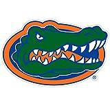 "NCAA 8"" Logo Magnet"