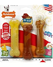 Nylabone Flavor Frenzy Power Chew DuraChew Dog Toys, Summer BBQ Flavors