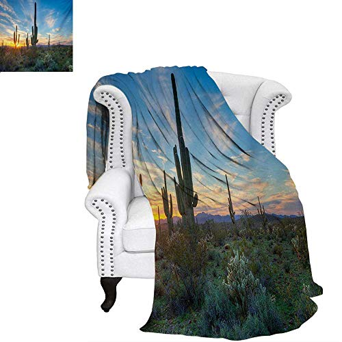 warmfamily Saguaro Summer Quilt Comforter Sun is Setting Between Cactus Plants with Spines Magical Noon Landscape Wild Design Digital Printing Blanket 50