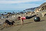 Exercise Ball -Professional Grade Exercise