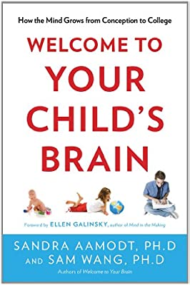 Stress And Your Childs Brain >> Welcome To Your Child S Brain How The Mind Grows From Conception To